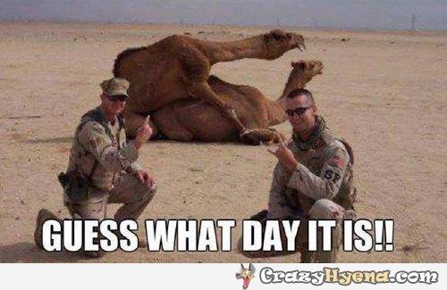 When in the desert....